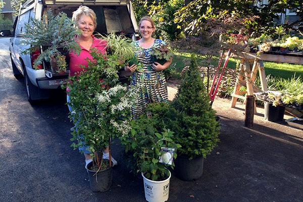 Plant Shopping